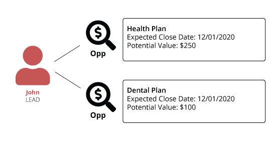 Diagram of a lead with sales opportunities